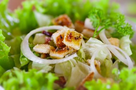 CHICKEN CAESAR SALAD: The Caesar salad close up. Shallow depth of field