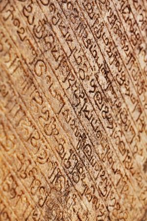 Medieval inscriptions carved on the stone wall Polonnaruva, Sri lanka Reklamní fotografie