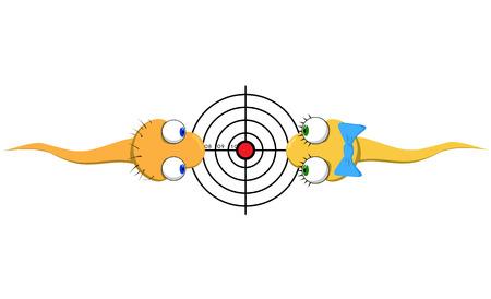 espermatozoides: Dos espermatozoides divertido vector, una chica y un chico se esfuerzan por finalidad