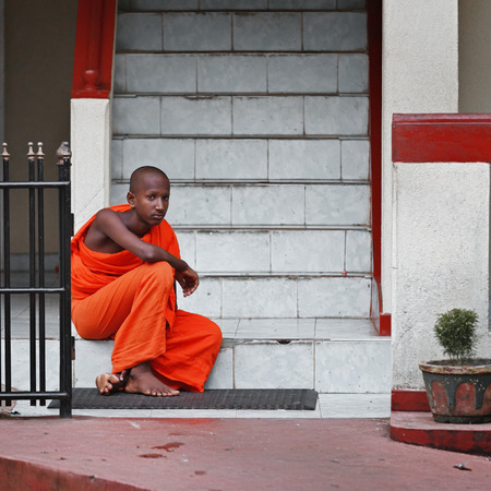 unambiguous: BENTOTA, SRI LANKA - 27 APR 2013: Young Buddhist monk sits on a monastery steps in Bentota, Sri Lanka. Sri Lnaka has unambiguous Buddhist majorities in the county. Editorial