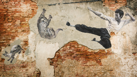 MALAYSIA, PENANG, GEORGETOWN - CIRCA JUL 2014: A black and white mural of Bruce Lee attacking a cat with a flying kick. Editorial