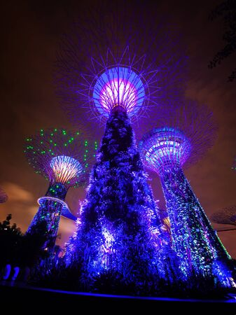 Three of the famous towers at Gardens by the Bay in Singapore, standing illuminated in bold blue lights, against a night sky. Editorial