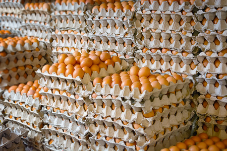 chicken and egg: Many hundreds of fresh chicken eggs on display in trays at a public market in Southeast Asia. Stock Photo