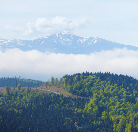 snow capped mountain: Snow capped mountain in the background of a forest with a road and excavator.