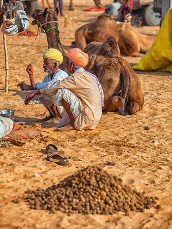PUSHKAR, RAJASTHAN, INDIA - CIRCA NOV 2012: Traditional Fair in Pushkar. Camels for sale lay on the sand
