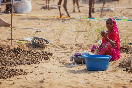 PUSHKAR, RAJASTHAN, INDIA - CIRCA NOV 2012: Traditional Fair in Pushkar. Indian woman collects manure