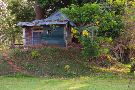 Sri Lanka, poor shack of rusty metal, green trees near it