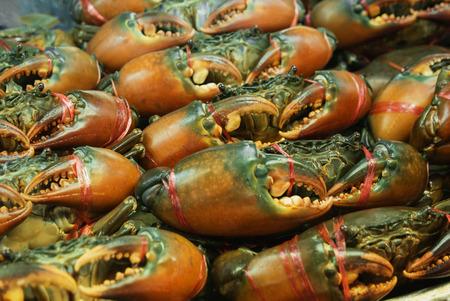 Frische Krabben auf dem thailändischen Markt. Nahaufnahme Standard-Bild - 87233062