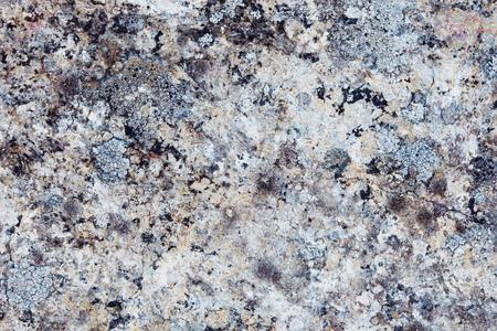 Der Oberflächengestein mit Flechte. Die nördlichen Berge Standard-Bild - 86805125