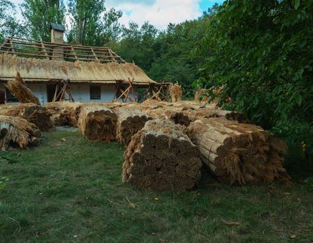 Reparatur eines traditionellen Strohdaches. Ukraine Standard-Bild - 86945109