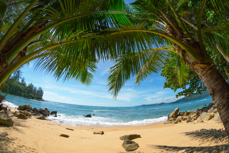Wild deserted beach with coconut palms. Fisheye shot. Phuket island, Thailand Stock Photo