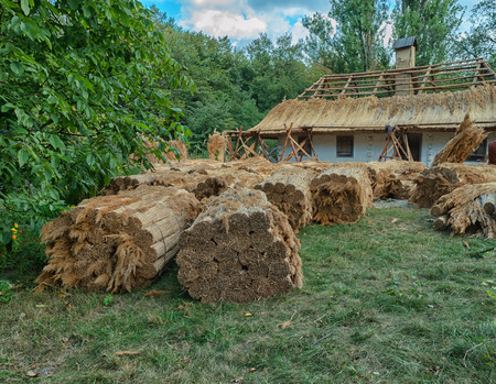 Repair of a traditional thatched roof. Ukraine