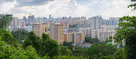 Panorama of residential areas of Singapore with greenery in the foreground