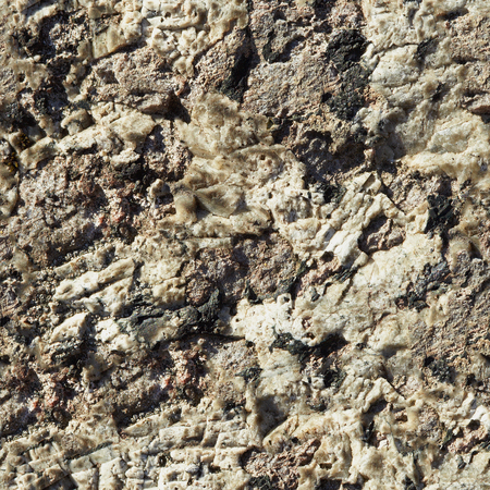 Seamless texture. Surface rocks of Khibiny Mountains
