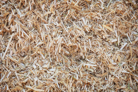 Closeup of natural, shredded straw bedding for sacred cows in India, would serve as an excellent background image.