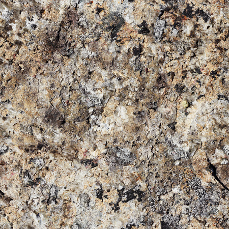 Natural seamless texture - rock surface pattern (Khibiny Mountains)