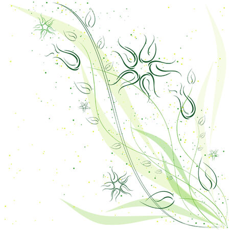 Flowers and leaves on a white background Stock Vector - 5903209