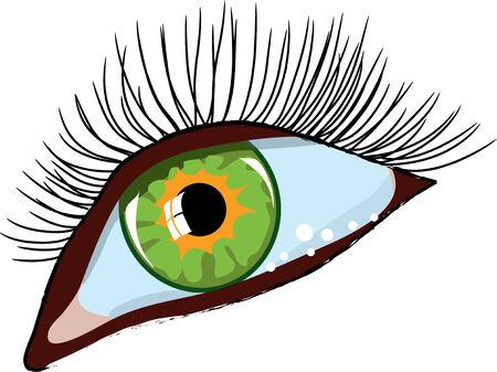long eyelashes: Green female eye with long eyelashes. illustration