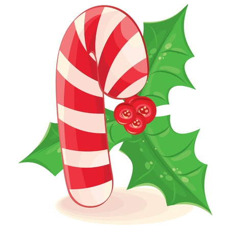 Christmas candy and a branch of mistletoe. Vector illustration on white background Stock Vector - 10830265
