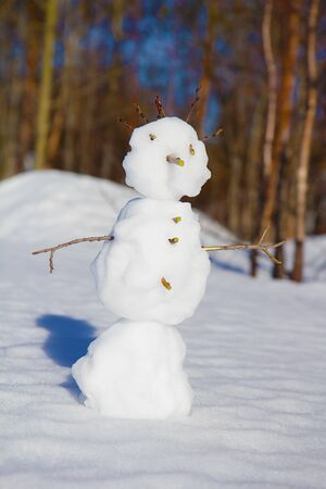 snowman and shadow on the snow. close-up Stock Photo - 11406612