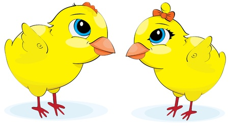 Cartoon chickens. illustration on a white background Vector