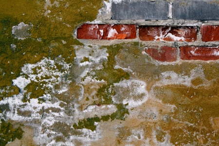 Texture. A ruined wall of bricks with cracked paint and mold photo