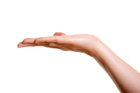 show of hands: Donna mano, palmo verso l'alto isolato su sfondo bianco