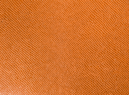 snake: Artificial leather. Macro photo. Imitation snake skin Stock Photo