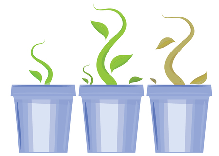 Vector set of flower pots. Shoots and death of plants