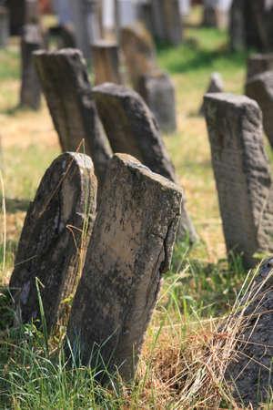 jewish community: Old jewish cemetery in Holesov, Czech Republic