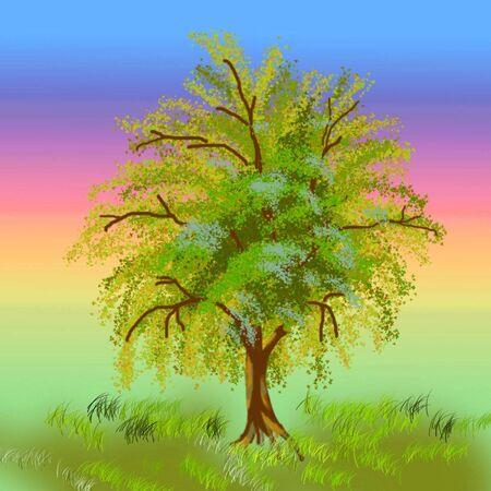 brash: Figure of a tree brash  Illustration
