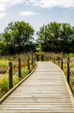wooden boardwalk in the dunes leading to the sandy beach, the path by the sea, plants on the dunes, tourism Stock Photo
