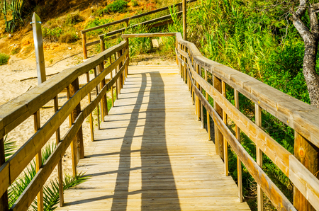 wooden boardwalk leading to the sandy beach, the path by the sea, green plants