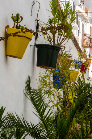 Ceramic flower pot with flowers hung on the wall, decorating the urban space, decorative street