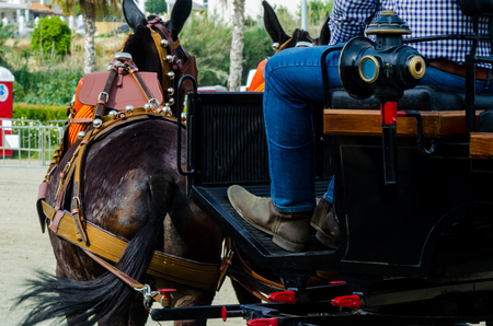 ALMAYATE, SPAIN - APRIL 22, 2018 Man driving horse with a wagon in a traditional Andalusian competition, traditional Spain contest based on the presentation of the ability to drive horse with a cart, professional work of carters with horses