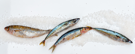 Whole raw organic mackerel fish with sea salt lying on a flat surface, healthy food Banque d'images