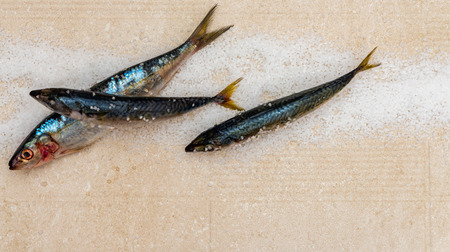 Whole raw organic mackerel fish with sea salt lying on a flat surface, healthy food 免版税图像