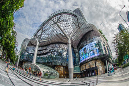 incidental people: Fisheye view of Ion Orchard, Singapore Editorial