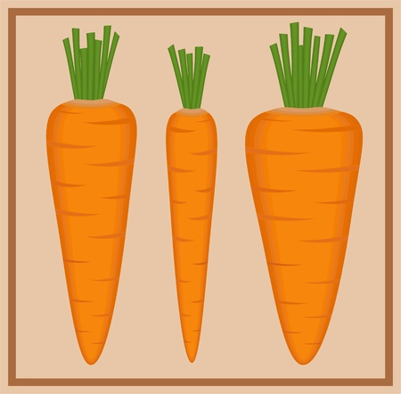 Illustration of three carrots isolated over beige background