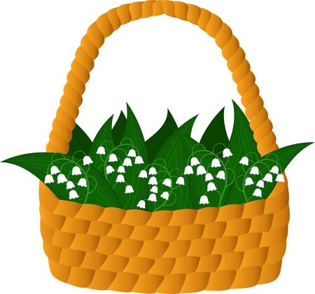freshening: Basket with lilies of the valley  Stock Photo