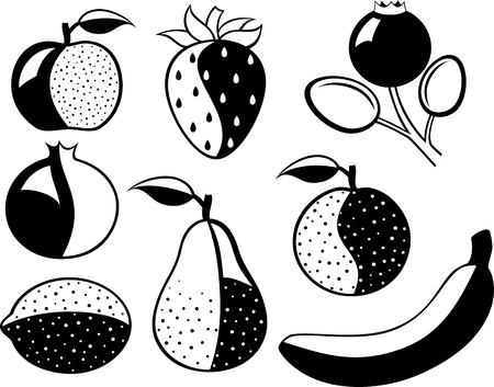 검은 색과 흰색 과일과 열매의 설정