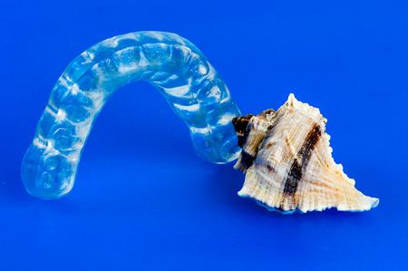 splint: Morder y shell sobre un fondo azul