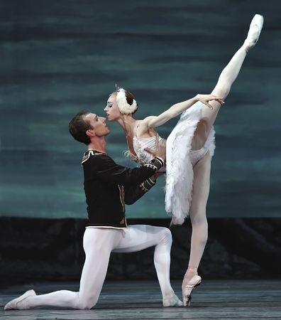 animal tutu: russian royal ballet perform Swan Lake ballet