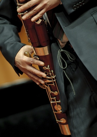 fagot: bassoonist on chamber music concert