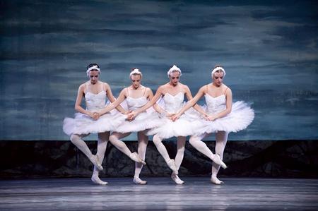 ballet hombres: CHENGDU - 24 de DEC: Ballet del lago de los cisnes interpretada por ballet real rusa en teatro de Jinsha el 24 de diciembre de 2008 en Chengdu, China.