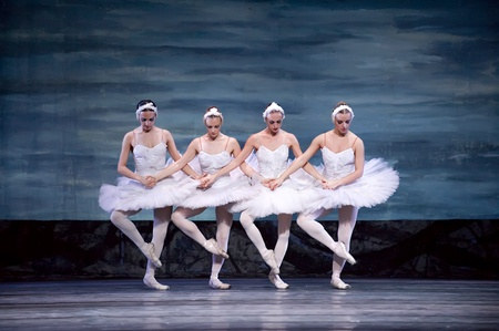 animal tutu: CHENGDU - DEC 24: Swan Lake ballet performed by Russian royal ballet at Jinsha theater December 24, 2008 in Chengdu, China.