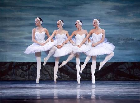 animal tutu: Russian royal ballet perform Swan Lake ballet at Jinsha theater December 24, 2008 in Chengdu, China.