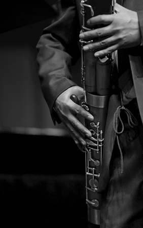 fagot: bassoonist on concert