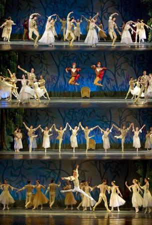 ballet hombres: CHENGDU - 24 de diciembre: Ballet real ruso realizar ballet de lago de los cisnes en el teatro de Jinsha, 24 de diciembre de 2008 en Chengdu, China.
