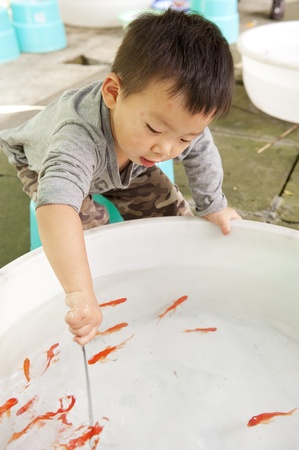 baby playing with goldfish photo